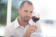 Man examining red wine on a wine tasting session - ZEF003196