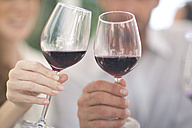 Hands holding glasses of red wine - ZEF003197