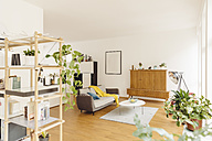 Living room and shelf with plants in modern house - MFF001364