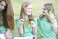 Group of female friends with exercise books and leaves in a park - ZEF004373