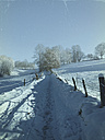 Germany, Palatinate Forest, winter landscape - LVF002549
