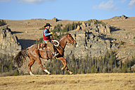 USA, Wyoming, riding cowboy - RUEF001372