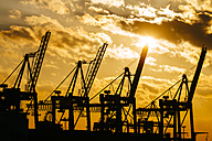 Germany, Hamburg, container cranes at sunset - KRPF001253