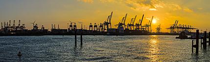 Germany, Hamburg, harbour cranes at Elbe river at sunset, Panorama - KRP001272