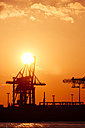 Germany, Hamburg, harbour, cranes at Elbe river at sunset - KRPF001274