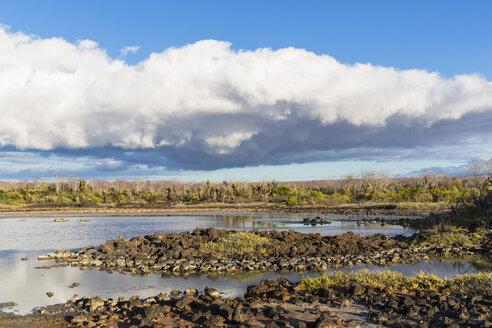 Ecuador, Galapagos Islands, Santa Cruz, view to lagoon - FO007272