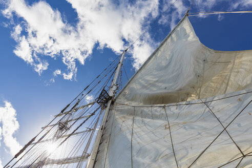 Rigging with sail of a sailing ship - FOF007540