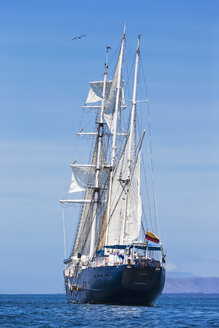 Pacific Ocean, sailing ship under sail at Galapagos Islands - FOF007561