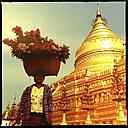 women selling flowers, Shwezigon Pagoda, myanmar - LUL000127