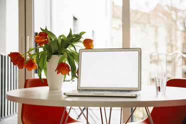 Laptop screen on a white round table with red tulips and chairs - MFF001388