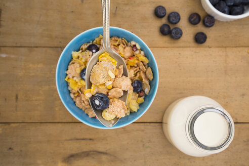 Glutenfree muesli with blueberries - LVF002594