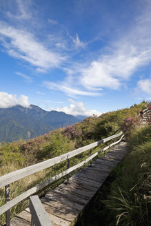 Taiwan, Renhe Road, Boardwalk in Taroko National Park - MEMF000680