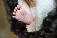 Feet of a newborn - JTLF000029