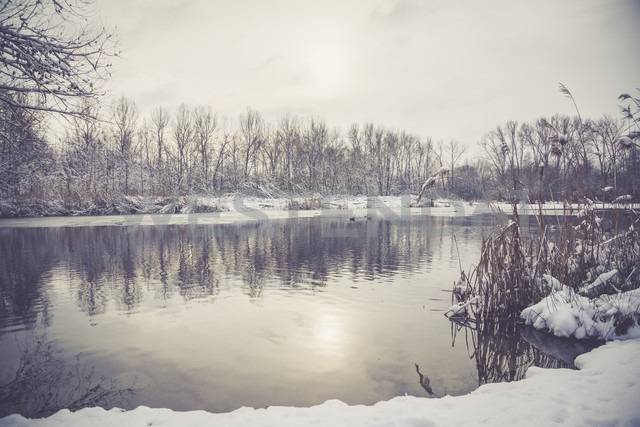 Germany, Bavaria, Ergolding, Pond in winter - SARF001265