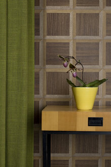 Sideboard with potted orchid and curtain in front of wooden wall cladding - PATF000021