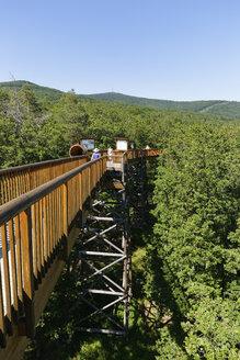 Austria, Burgenland, Geschriebenstein nature park, Althodis treetop walk - SIEF006413