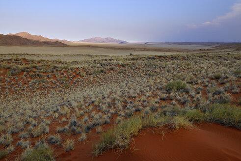 Namibia, Namib Desert, landscape at NamibRand Nature Reserve - ES001521