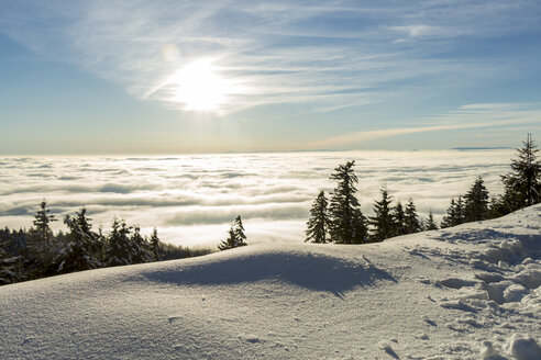 Germany, Baden-Wuerttemberg, Black Forest, View over cloud cover against the sun - JUNF000174