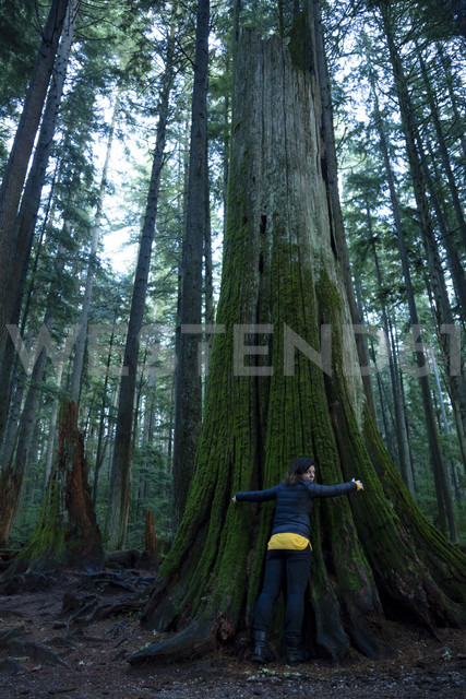 Canada, Vancouver, woman hugging tree in forest - NGF000206 - Nadine Ginzel/Westend61