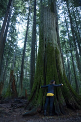 Canada, Vancouver, woman hugging tree in forest - NGF000206