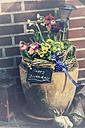 Flower tub - CSTF000798