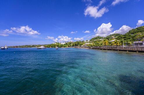 Caribbean, Grenadines, St. Vincent, near Arnos Vale - THAF001217