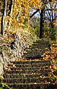 Germany, stony stairs in autumn - JTF000622