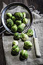 Brussel sprout in colander and knife - SARF001281
