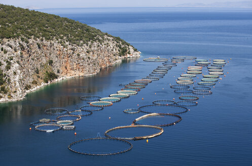 Greece, Sofiko, aquaculture in Mediterranean Sea - WWF003467