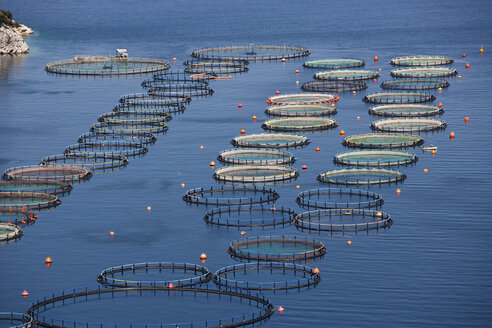 Greece, Sofiko, aquaculture in Mediterranean Sea - WWF003468
