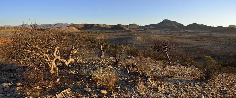 Namibia, Namib Desert, Kaokoland, view over Hartmann Mountains - ESF001532