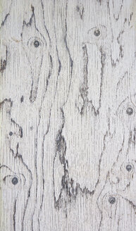 Wood grain - WWF003530