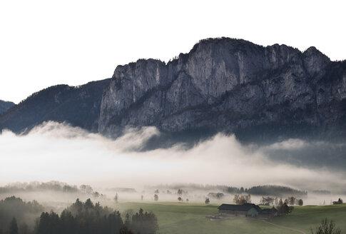 Austria, Mondsee, Drachenwand in morning mist - WWF003453