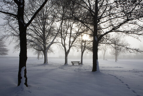 Austria, Mondsee, snow-covered park with bench - WW003553