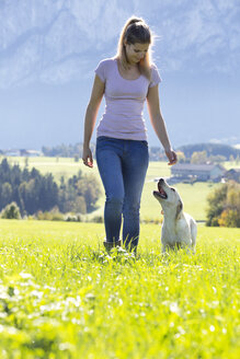 Austria, Mondsee, woman teaching Labrador Retriever on Alpine meadow - WWF003742