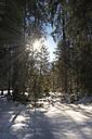 Austria, Tyrol, Pertisau, winter landscape - MKFF000157