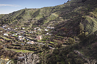 Spain, Canary Islands, Gran Canaria, Vega de San Mateo - MFF001443