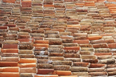 Roof tiles - WWF003565