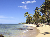 Dominican Republic, Beach of Las Terrenas - SHKF000244