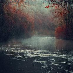 Germany, near Muengsten, Wupper river in autumn - DWI000423