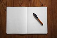Ballpen lying on opened notebook - RBF002431
