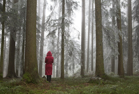 Austria, woman standing alone in the wood - WWF003785