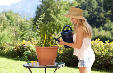 Young woman watering potted plant in a garden - WWF003843