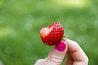 Woman eating strawberry - CHPF000041