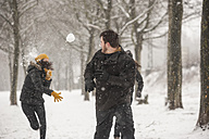 Three friends having a snowball fight - PAF001264