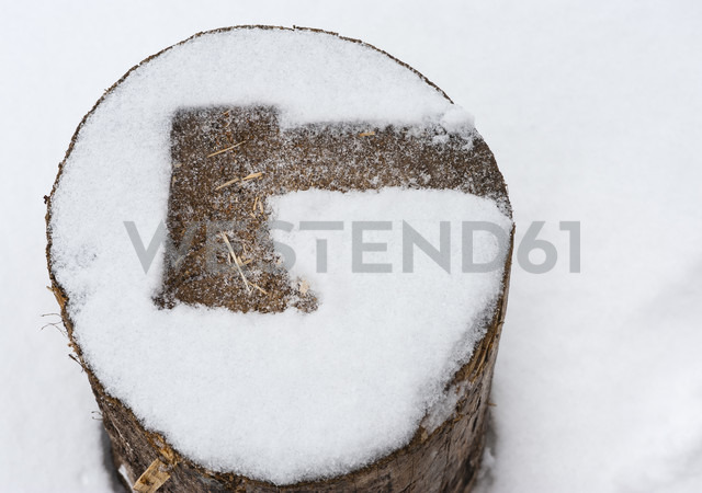 Imprint of an axe on a snow-covered log of wood - JB000238