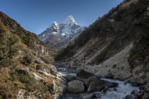 Nepal, Khumbu, Everest region, Pangboche, trekkers and yaks on the Everest Trail with Ama Dablam - ALRF000057