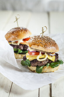 Homemade cheeseburger - SBDF001630