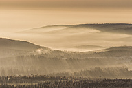Germany, Saxony-Anhalt, Harz National Park, sunbeams at sunset in winter - PVCF000264