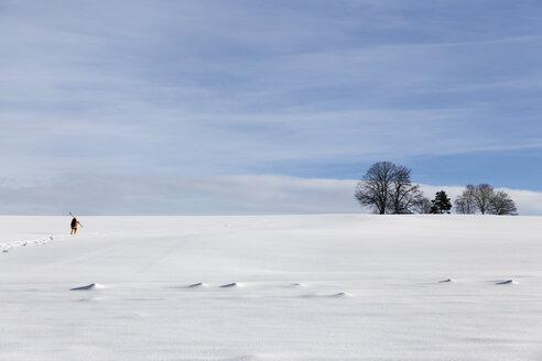 Germany, Baden-Wuerttemberg, Waldshut-Tiengen, person walking with skis in winter landscape - MIDF000042